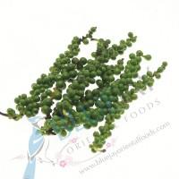 Green Peppercorn kg