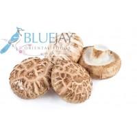Shitake Mushroom kg