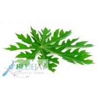 Papaya Leaf Kg