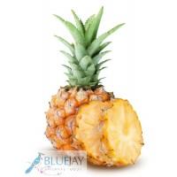 Baby Pineapple 2kg