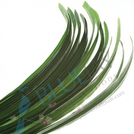 Pandan Leaf