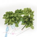 Cowslip Flower kg