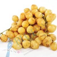Burmese Grape Kg