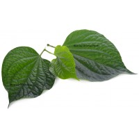 Bai Cha Plu Leaf Kg
