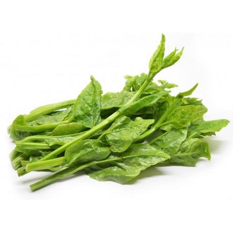 Ceylon Spinach Kg